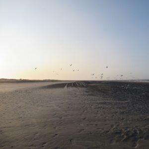Meerfair Online Shop für natürlichen Schmuck, Meer Impressionen