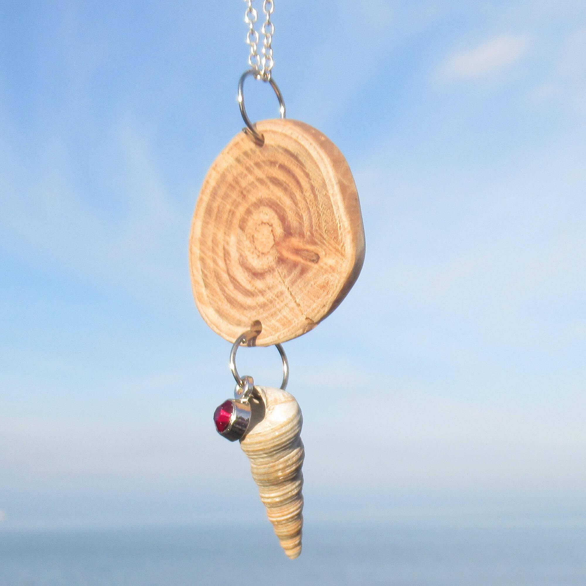 Treibholzscheibe mit schöner Maserung und Schneckenmuschel