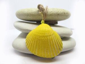 Muschel in gelb